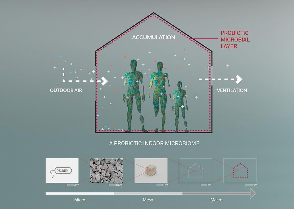 Probiotic Design - a building immune system.