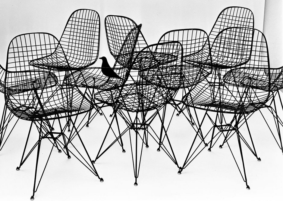 Wire Chairs with bird, 1953. Photo Charles Eames.