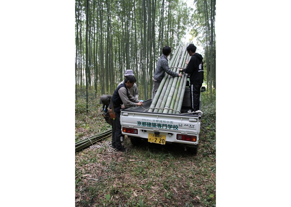 First find your bamboo....