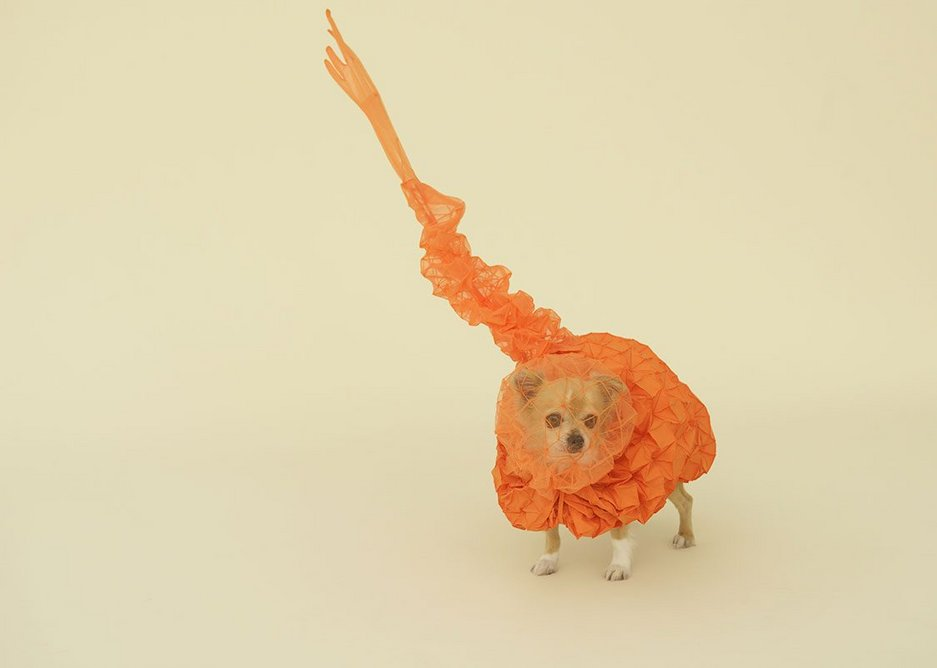 Chihuahua Cloud by Reiser + Umemoto for Chihuahua.