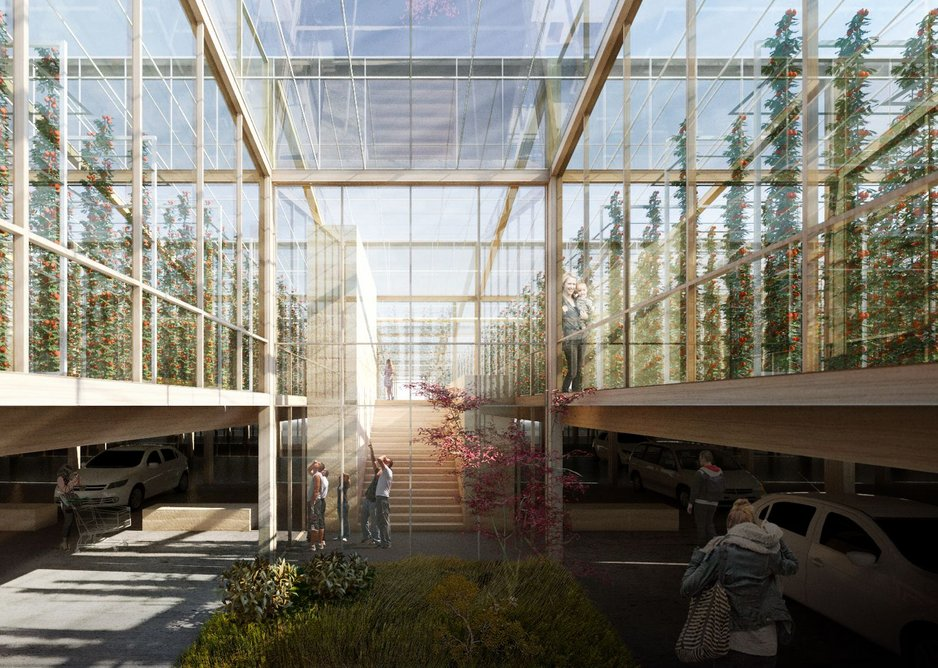 Shaw Studio's timber urban farm proposal is part of creating a sustainable and greener food economy.