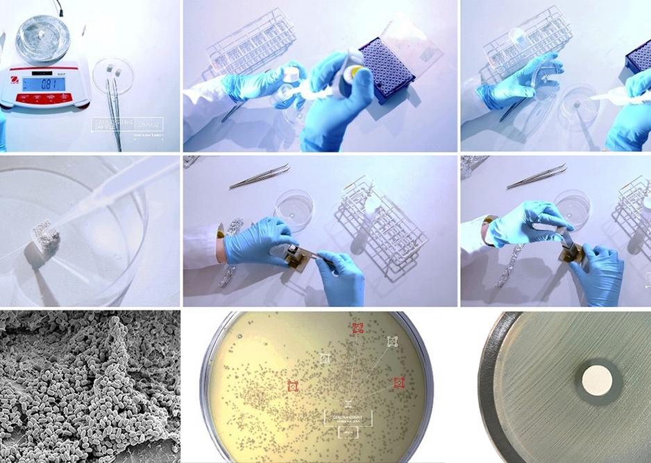 Micro Scale Design - Probiotic material inhibition of MRSA.