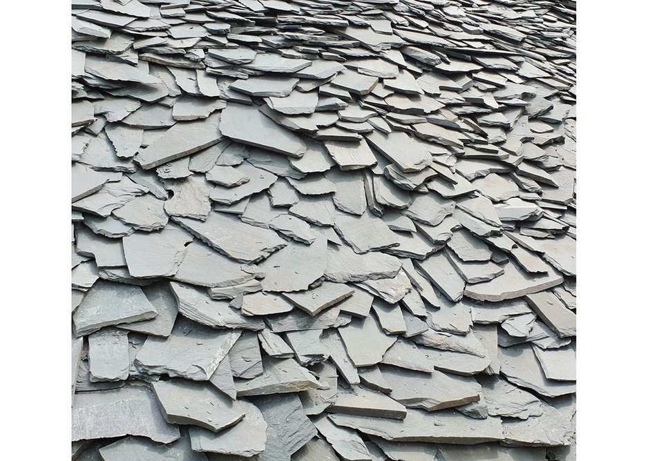 or a jumble of slate in its natural habitat.
