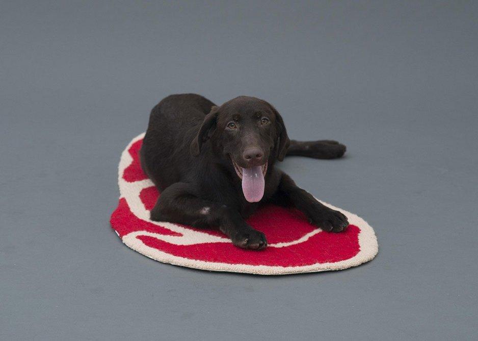Niku Rug by Ma Yansong for Labrador Retriever.