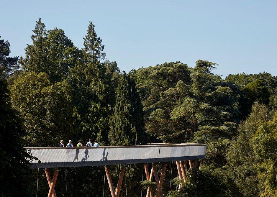 Stihl Treetop Walkway, Tetbury Glenn Howells Architects.