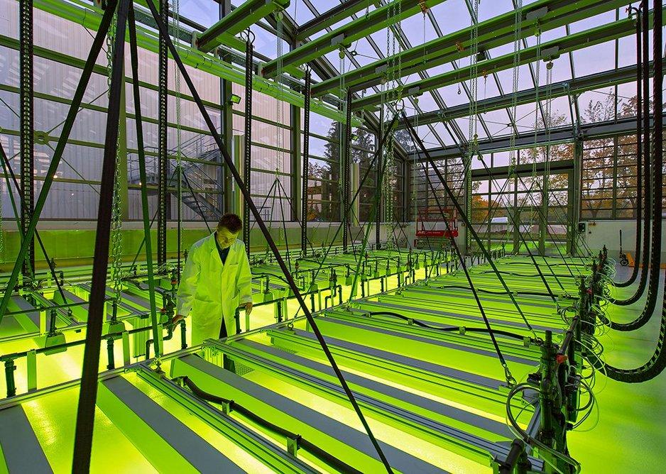 Algae Cultivation Centre at Technical University of Munich.