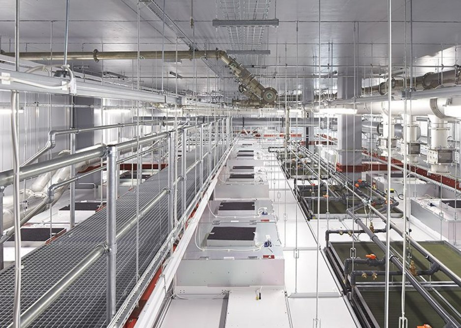 Most of the ground floor is devoted to a 3m high plenum for servicing the largest clean room.