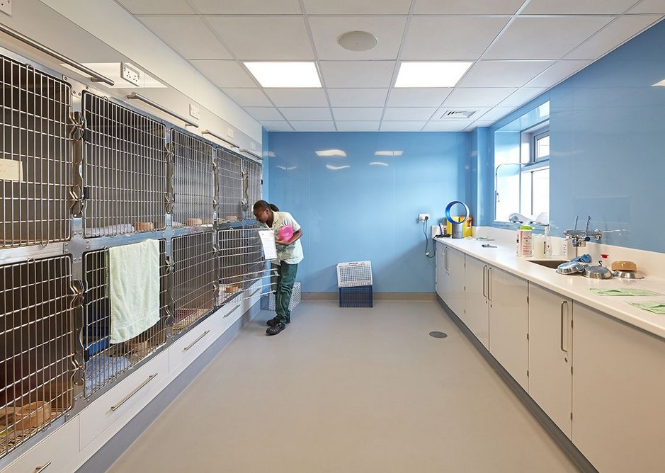 One of the surgery recovery rooms in the new veterinary hospital.