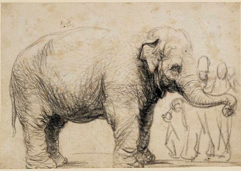 And out at the Brynmor Jones Library at Hull University, Rembrandt's Asian Elephant is part of a fine show of drawings.
