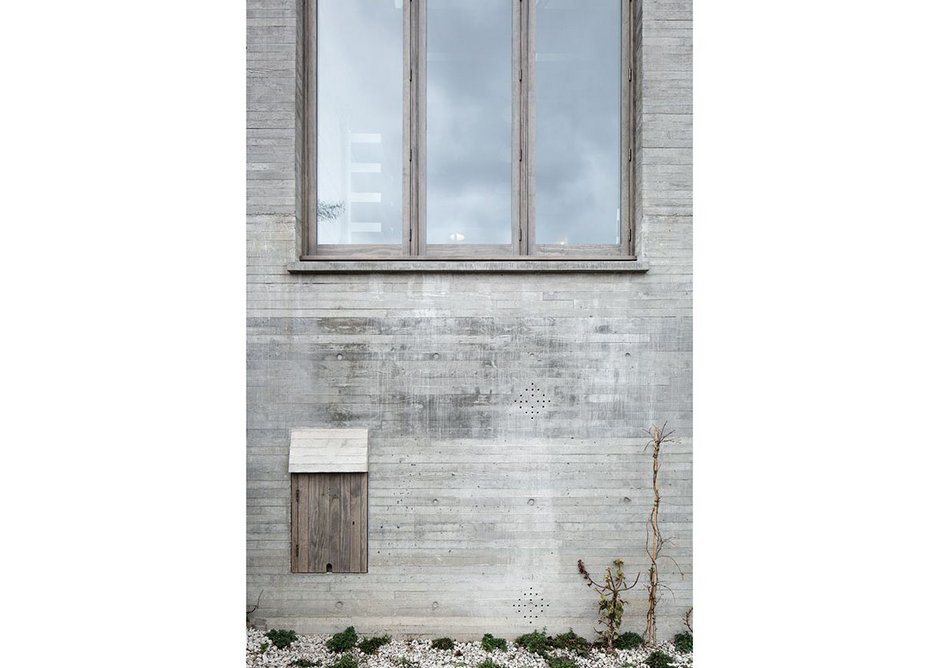 The concrete walls of the Juergen Teller Studio with their nascent planting, before it had time to colonise the studio.
