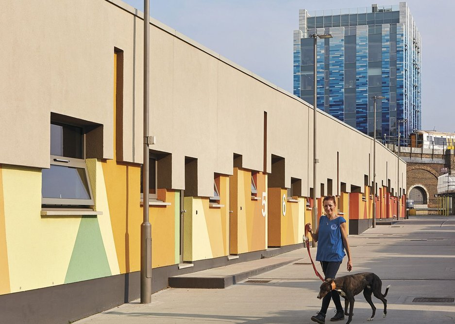 The intake kennel block with the blue Veterinary Hospital and Centre of Excellence building behind.