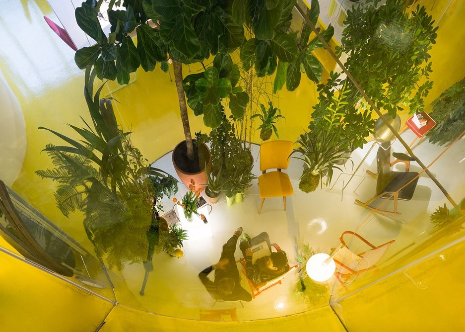 The double height greenhouse from above.