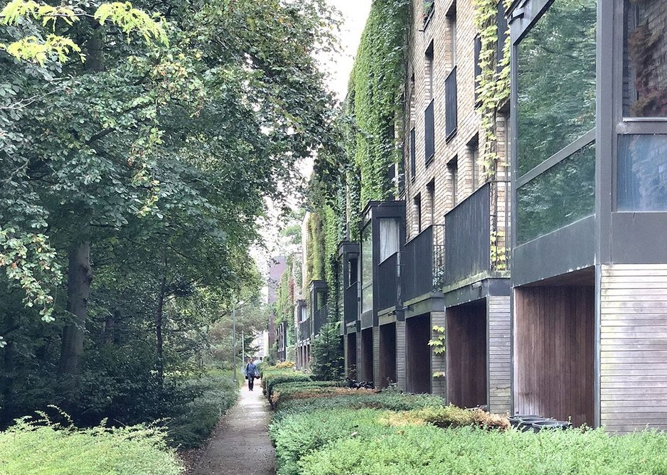 Mature landscaping engulfs well proportioned townhouses by Maccreanor Lavington