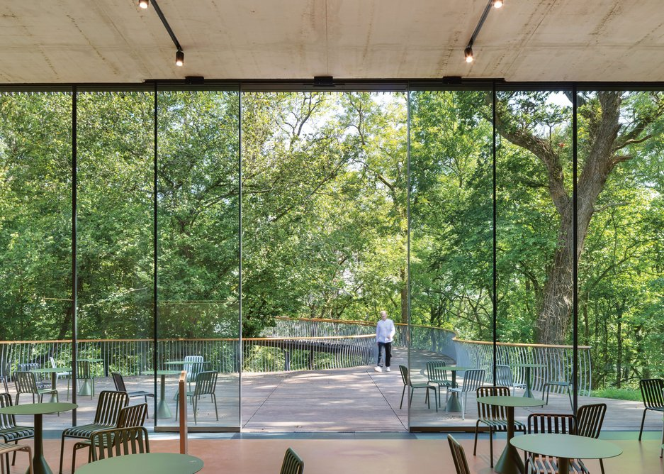The 5m high entrance café/reception looks west back across to the canopy of the trees in the adjacent dell.