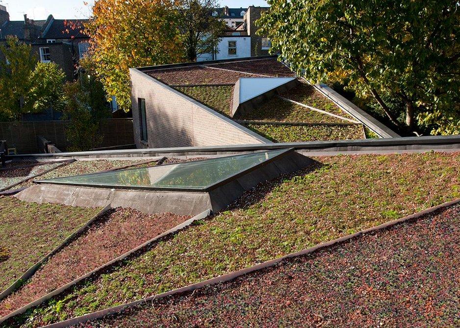 Ott's Yard triangulated roofscape, planted by Arabella Lennox-Boyd.
