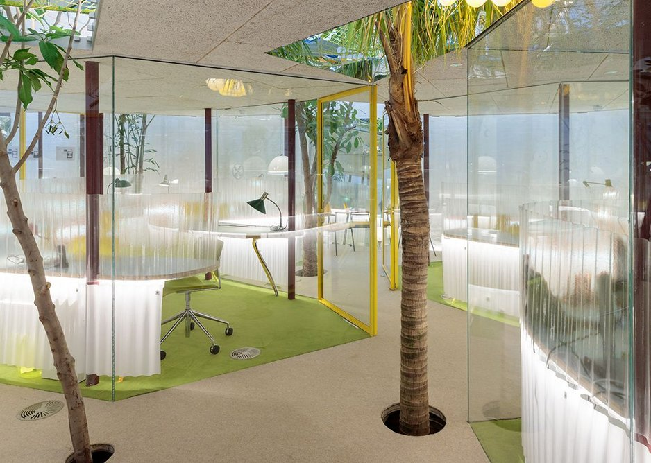 Between the trunks: The private studios at Second Home Holland Park.