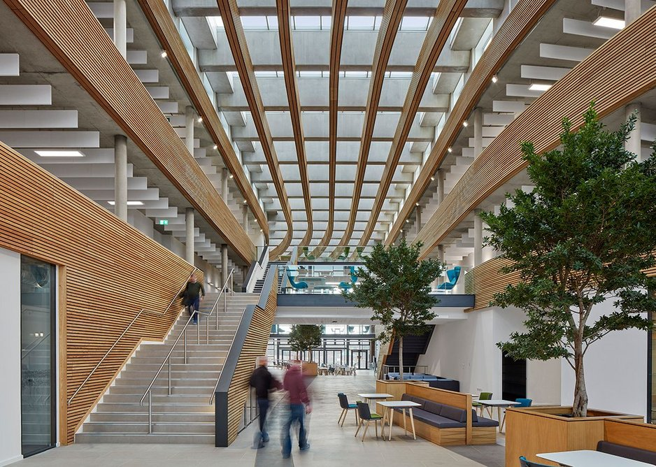 A welcoming entrance: in the bright and generously proportioned atrium the acoustics are well controlled by the larch cladding and baffles.