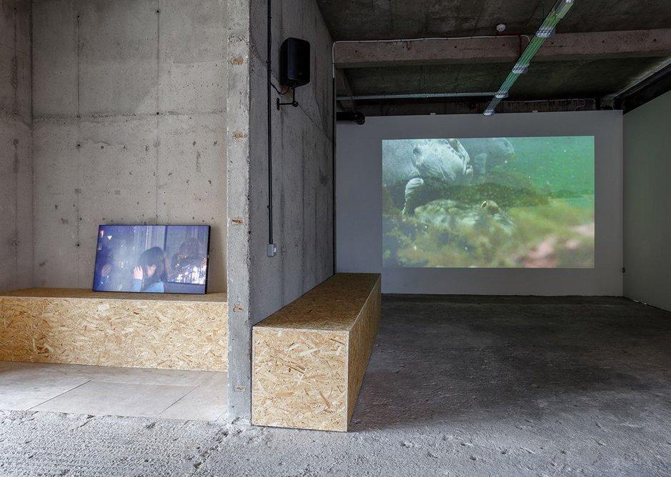 Installation view, Michel Auder at SI Artspace. Courtesy Art Sheffield.