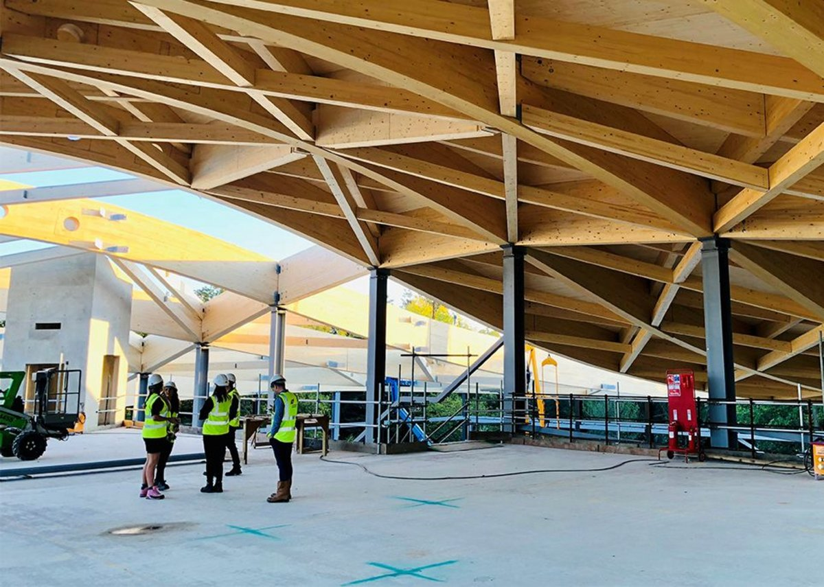 The massive timber roof of Felicity Meares' project, St George's College Activity Centre.