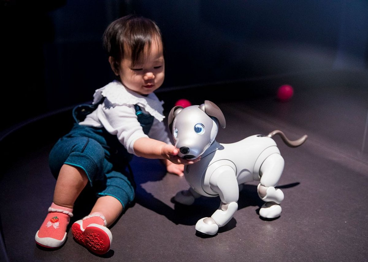 Aibo robotic dog  Sony Corporation, from AI: More than Human, Barbican Centre, until August 26, 2019.