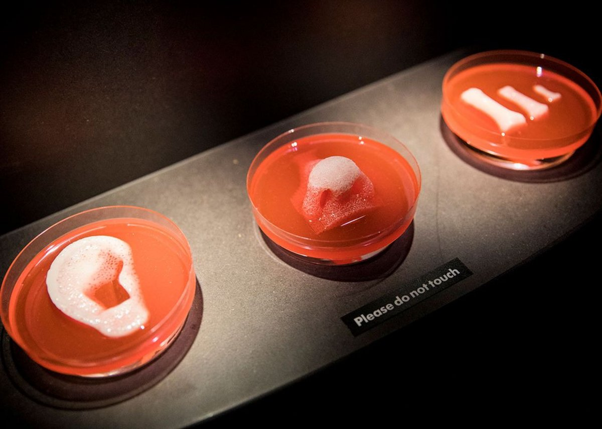 3D printed organ scaffolds. Wake Forest Institute for Regenerative Medicine, from AI: More than Human, Barbican Centre, until August 26, 2019.