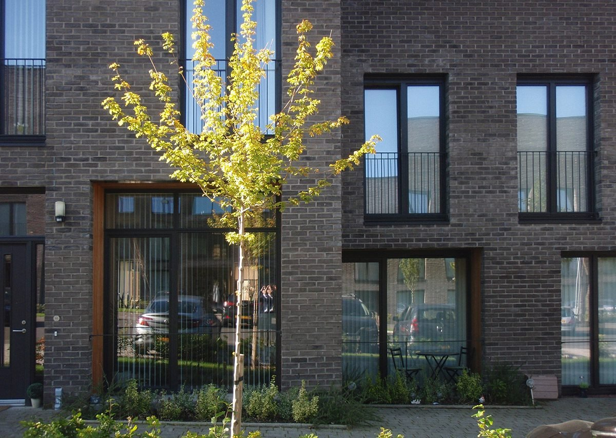 Dunira Street Housing.