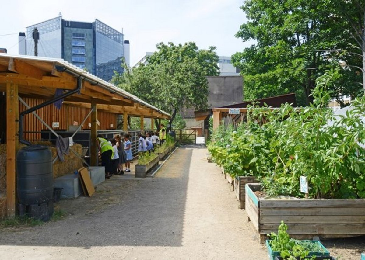 Waterloo Community Farm.