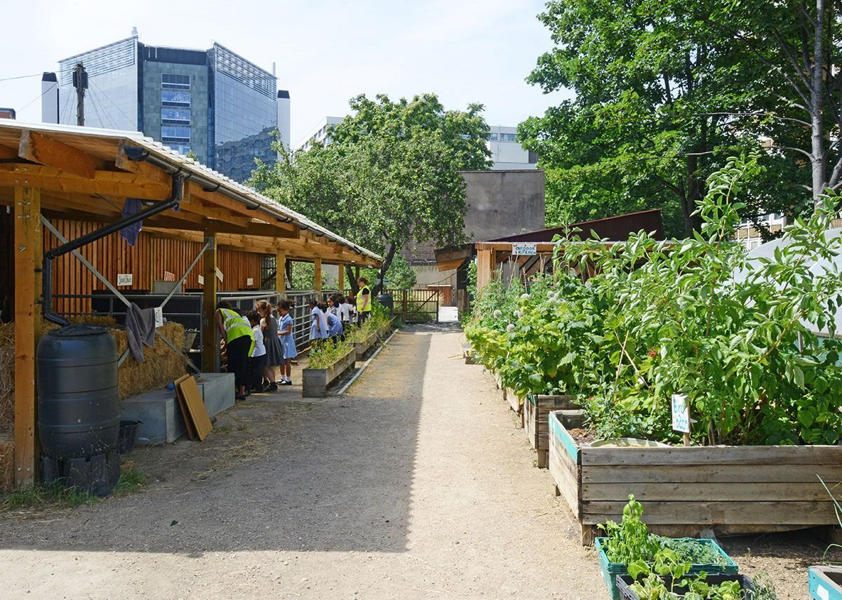 Animal pens and growing plots. MacEwen Award shortlisted Waterloo City Farm, Lambeth, London by Feilden Fowles Architects. Feilden Fowles
