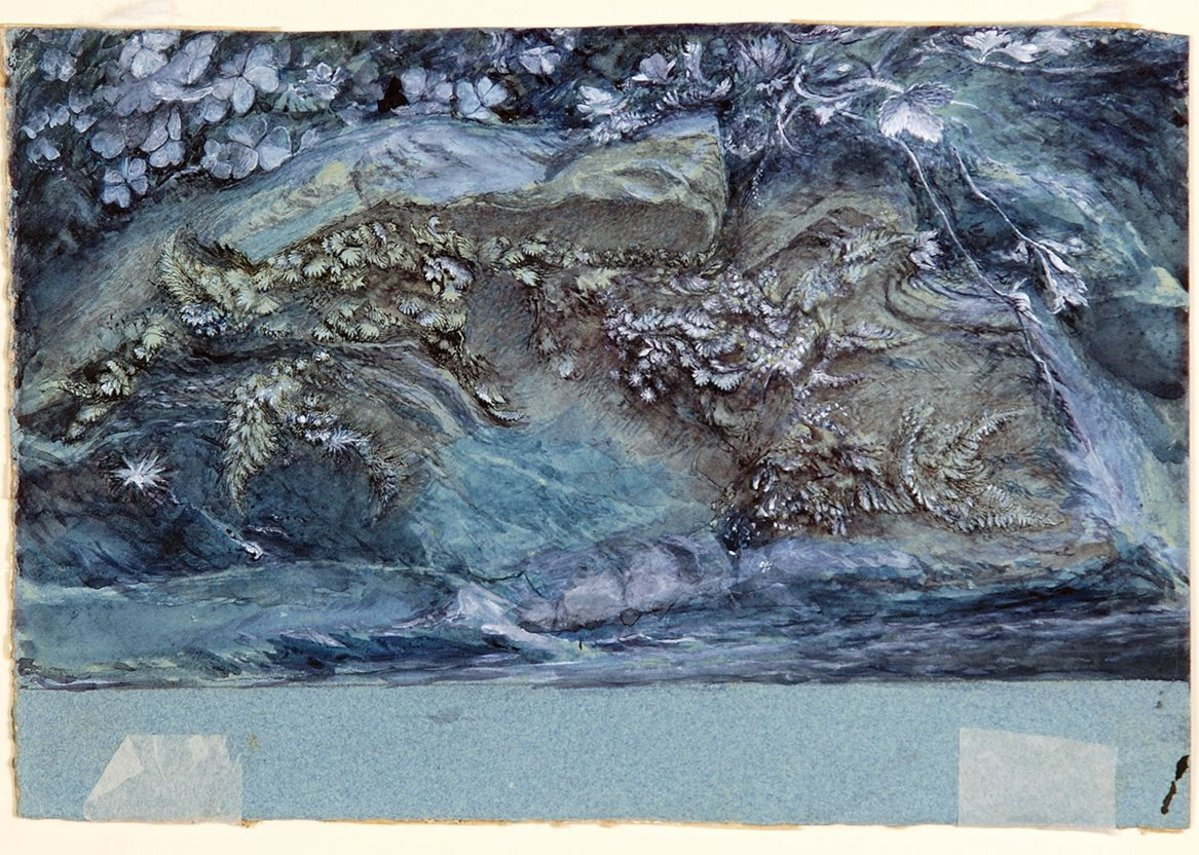 John Ruskin, Study of Moss, Fern and Wood -Sorrel, upon a Rocky River Bank, 1875-79, © Collection Guild of St George / Museums Sheffield