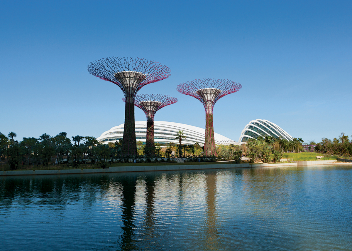 Cooled Conservatory Complex at Gardens by the Bay, Singapore. The project was won in competition in 2006. Photo: © Craig Sheppard