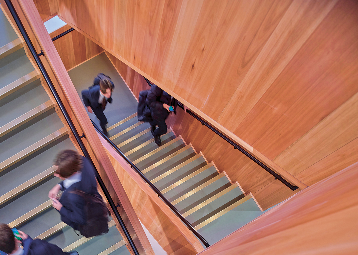 Main staircase is lined with Eucalyptus wood.