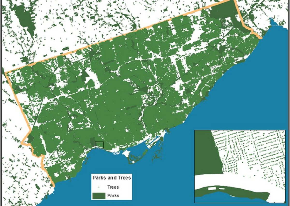 The Greenspace map of the city of Toronto constructed from the individual tree information Street Tree General Data.