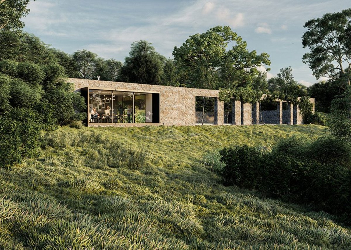 Renderings of houses from Dandelion Seeds Architects' website.