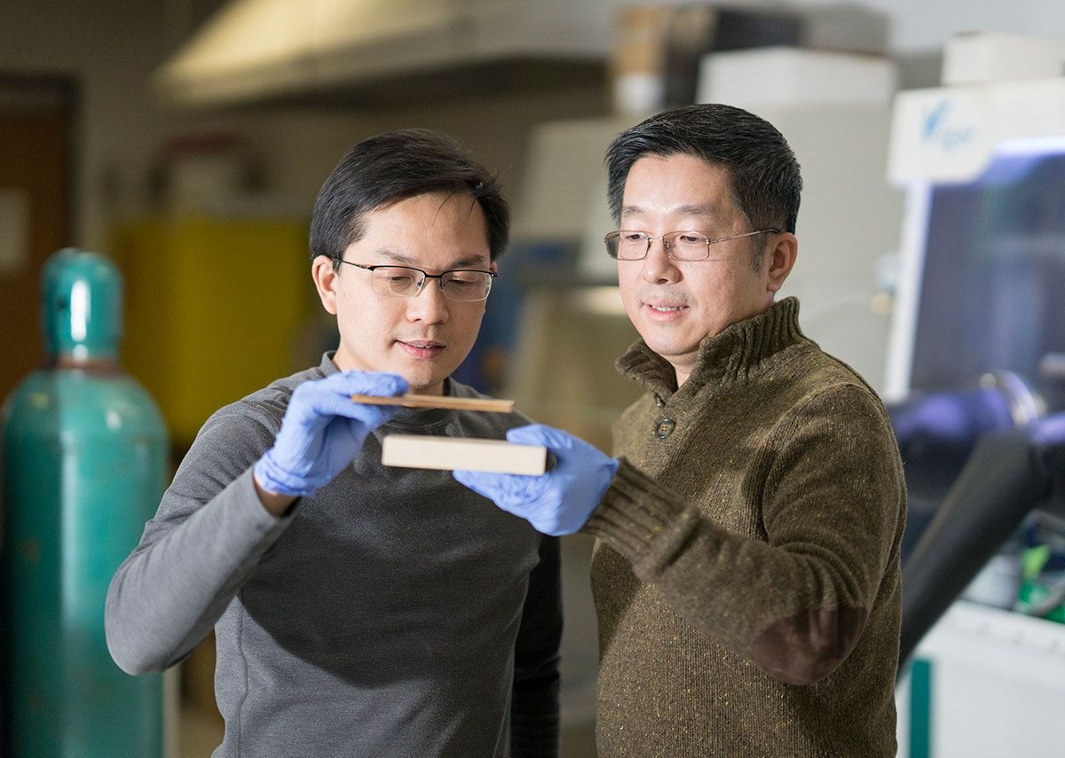 University of Maryland department of materials science co-leader Teng Li and assistant professor Liangbing Hu compare laboratory samples.