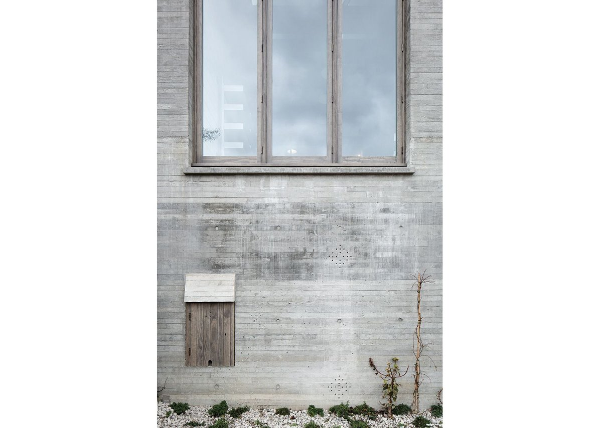 Accoya windows installed in the front elevation were designed by 6a and treated with a tinted oil to complement the concrete face.