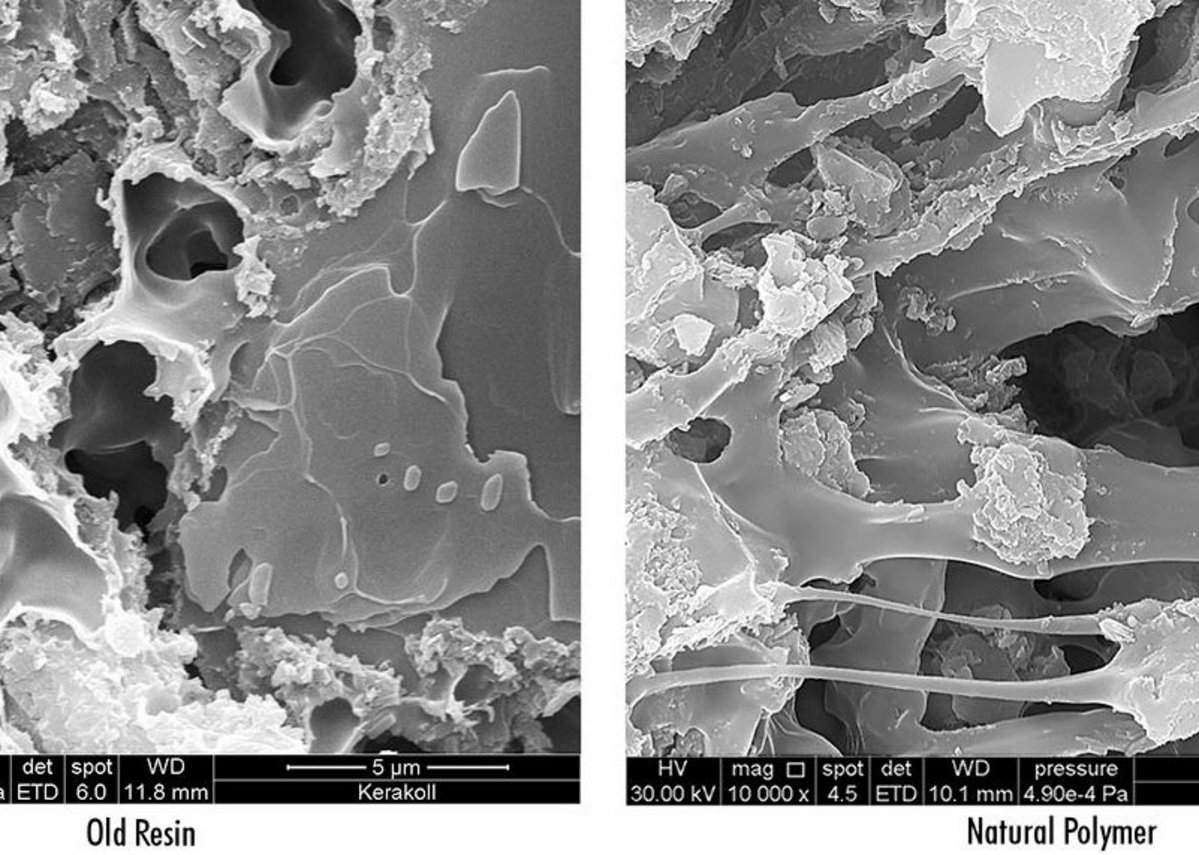The difference in structure between a conventional reactive resin (left) and the new natural polymer used in Biogel adhesives (right).