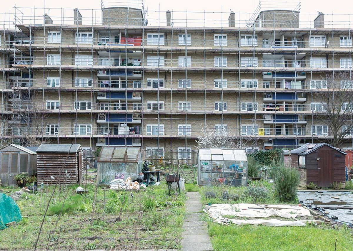 These allotments were once the terminal basin of a branch of the Regent's Canal. Now they are an unexpected urban oasis overlooked by housing from the 1930s to the 1950s.