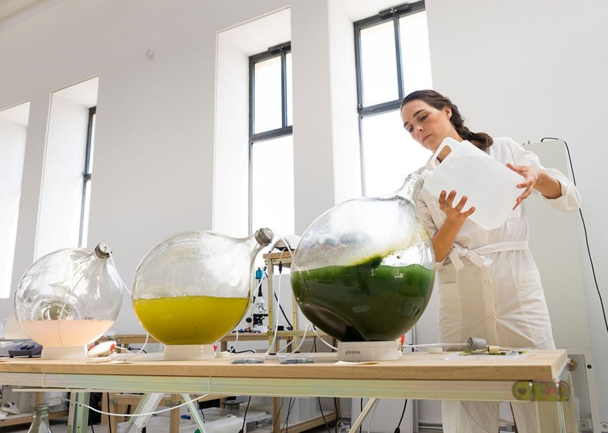 Making bioplastic from algae, Studio Klarenbeek & Dros at the Luma Foundation.