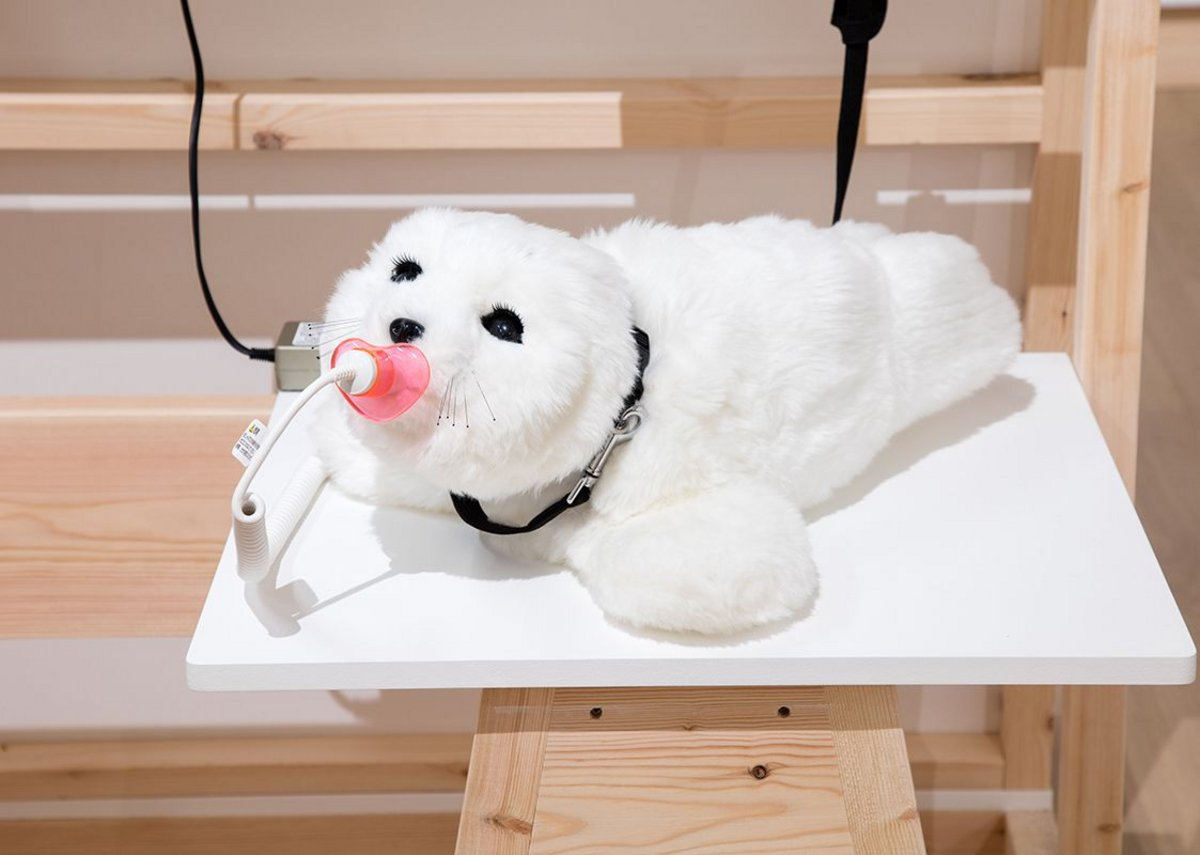 Paro the Seal therapeutic robot, used to improve communication and reduce stress in dementia patients.