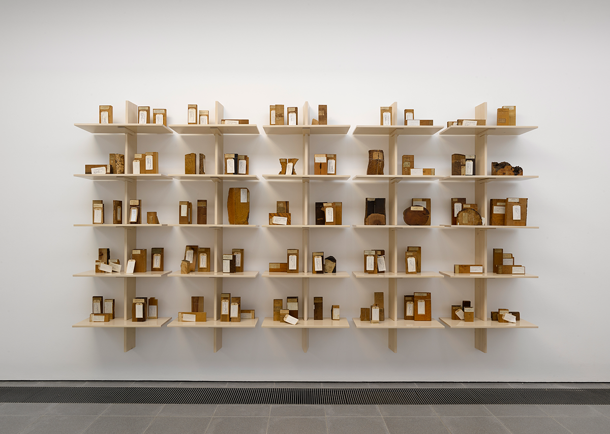 Installation view of Formafantasma: Cambio at the Serpentine Galleries, London. Photo credit: George Darrell. The display shows smaller samples from The archive of lost forests, 2020, samples from the Economic Botany Collection at Kew Gardens.