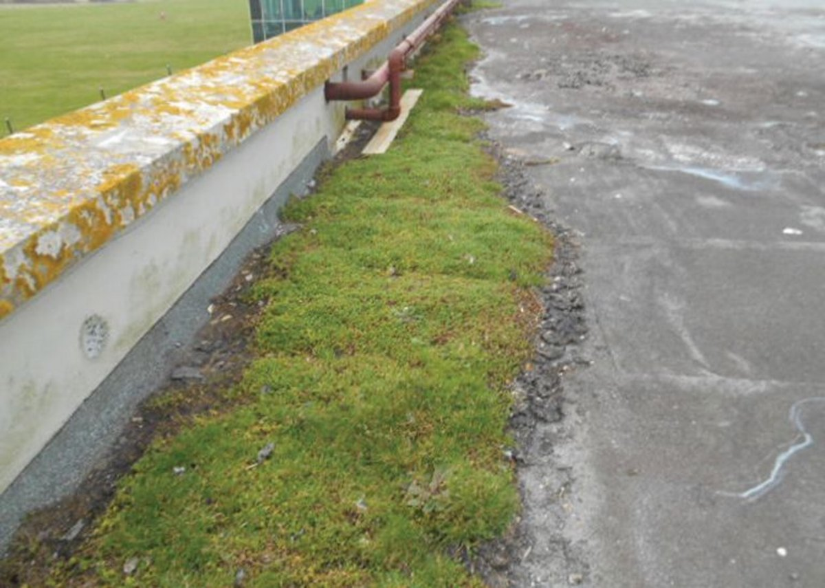 Ponding water can also lead to moss growth and detritus build-ups, both harmful to a flat roof's longevity.