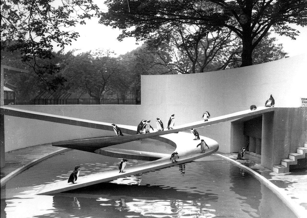 Penguin Pool London Zoo London 1934
