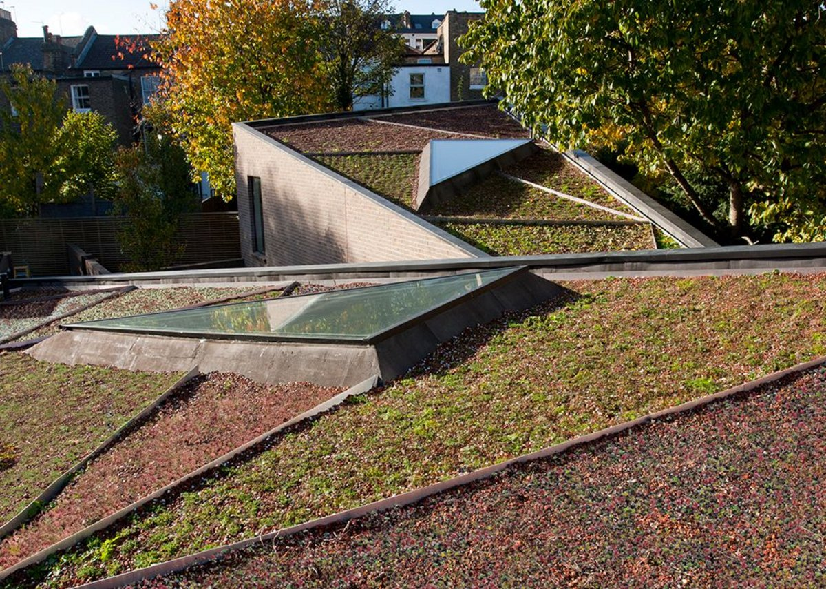 Ott's Yard triangulated roofscape, planted by Arabella Lennox-Boyd.