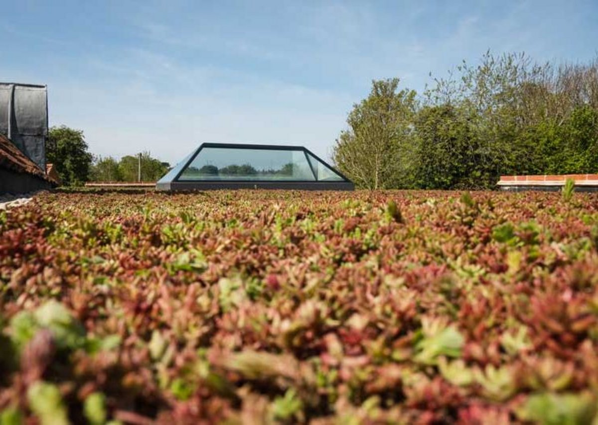Connecting to nature: The installation of a live sedum roof can increase the lifespan of protective membranes by shielding them from ultraviolet rays, potentially weatherproofing a landscaped area for the design lifespan of the building.
