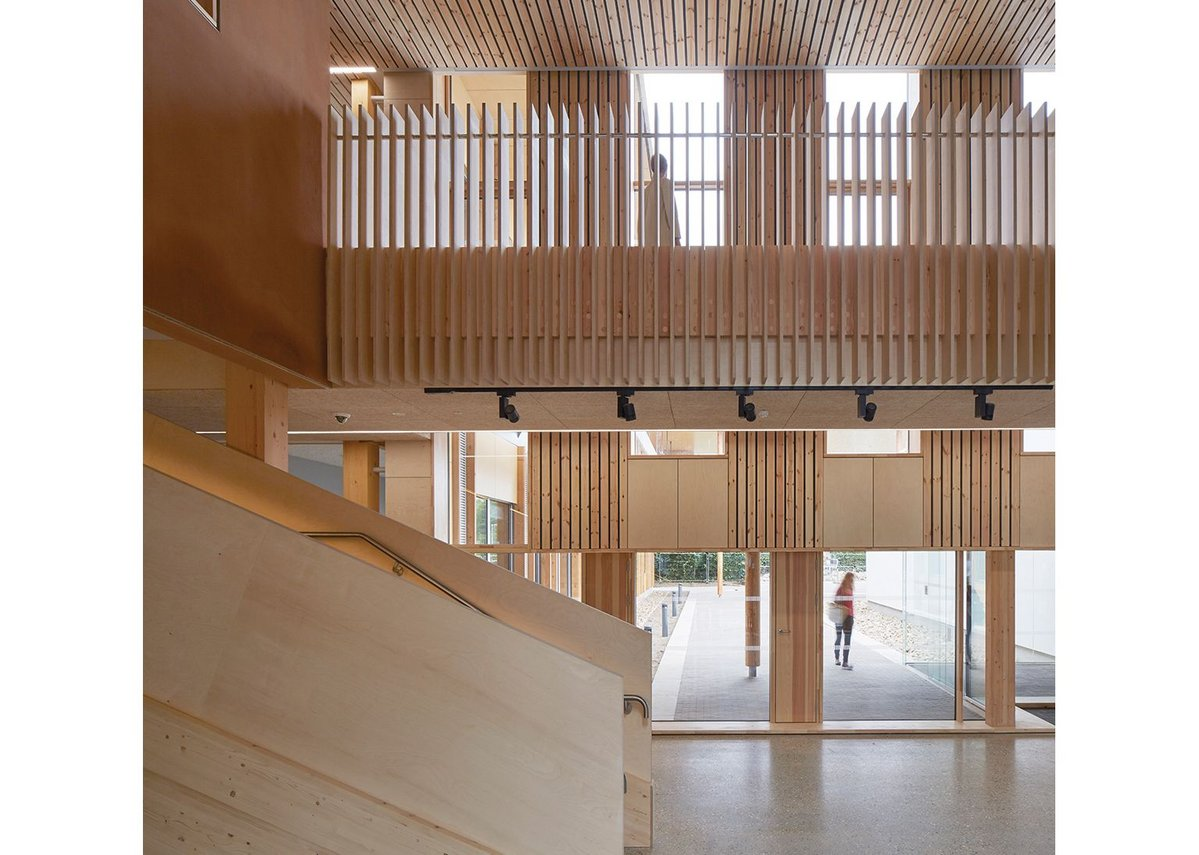 Sixteen timber products include ceiling  slats and CLT, visible here, as well as  glulam, softwood from nearby Thetford Forest and iroko recycled from  Lasdun lab desks.