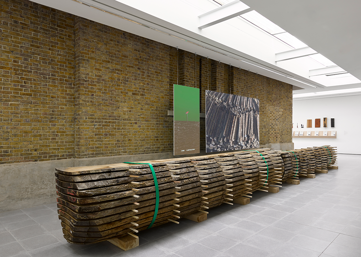 Installation view of Formafantasma: Cambio at the Serpentine Galleries, London. Photo credit: George Darrell. In the foreground is a locally sourced oak in the early stages of being processed into timber.