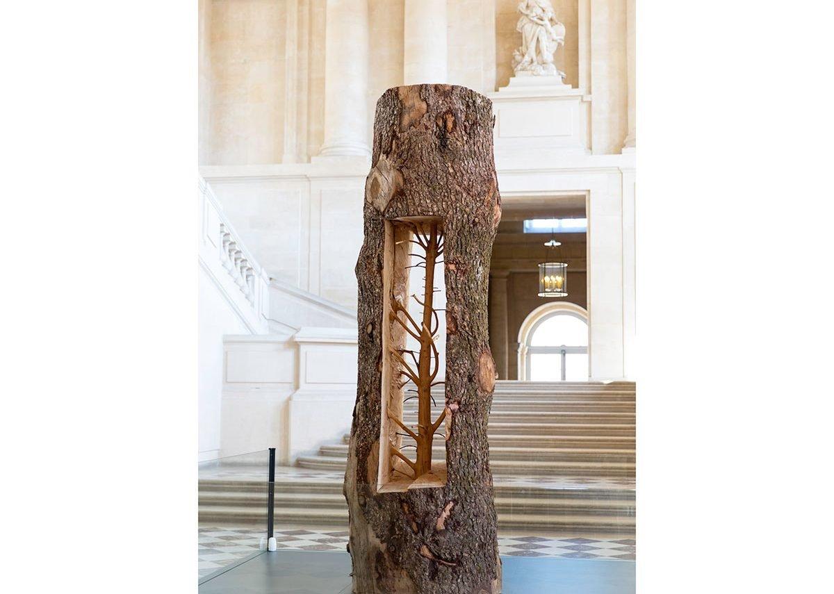 Giuseppe Penone, Albero Porta - Cedro/Door Tree - Cedar, 2012