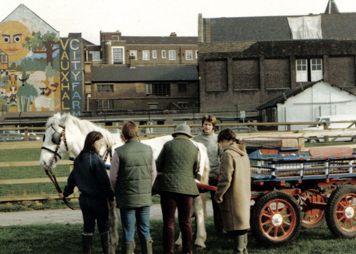Vauxhall City Farm - history