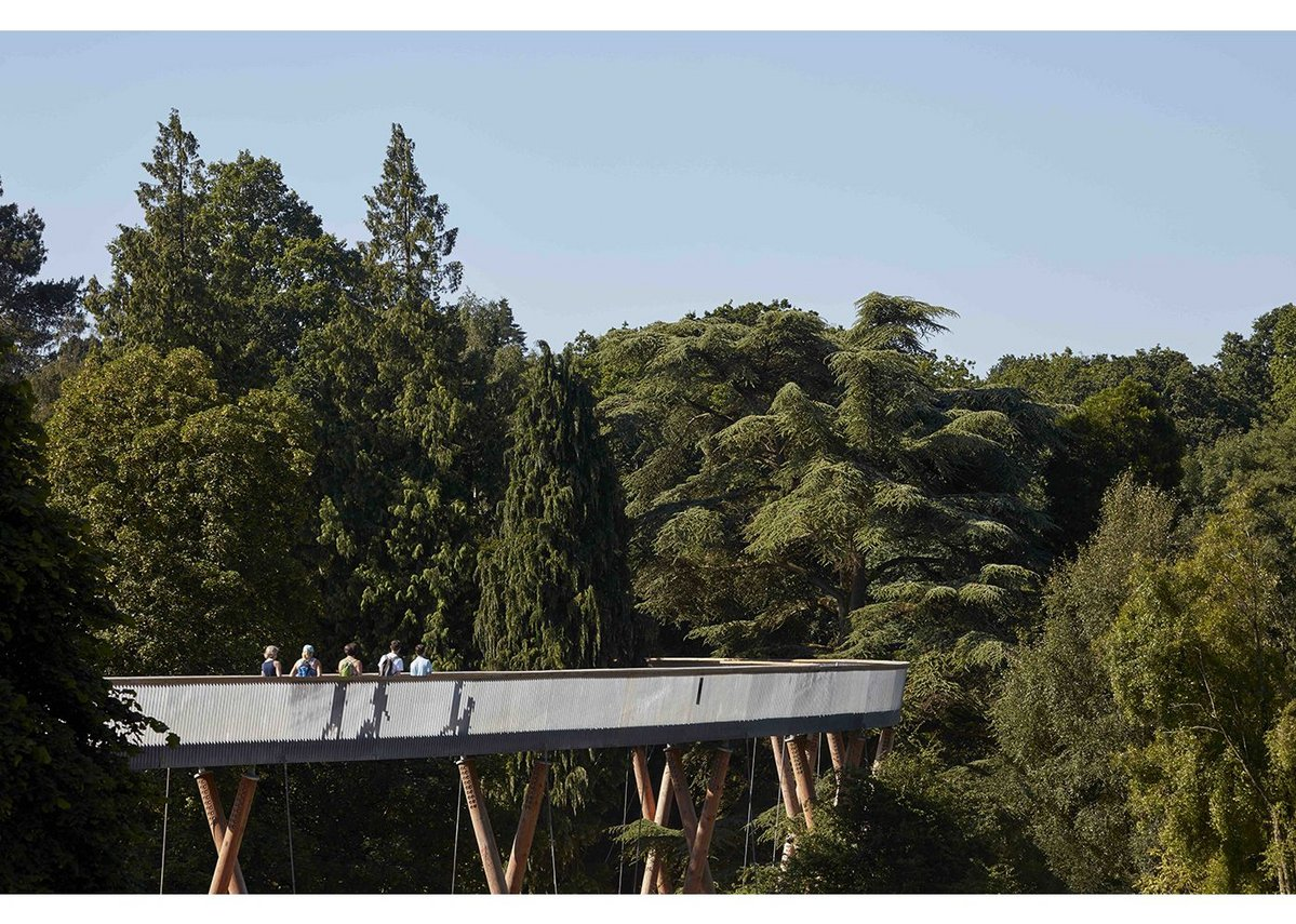 Stihl Treetop Walkway by Glenn Howells Architects, Commercial & Leisure Winner 2016.
