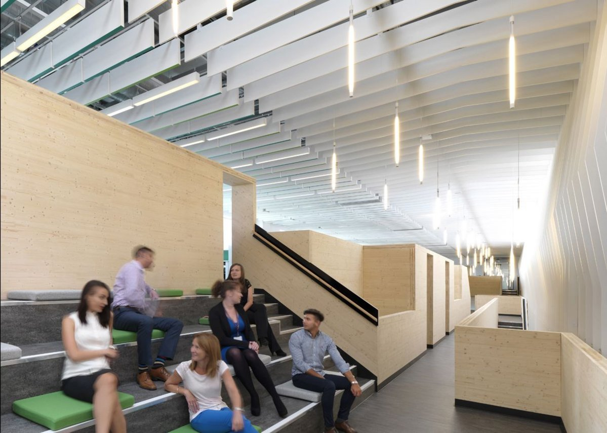 Hidden within the spine is an informal amphitheatre space for larger company meetings.